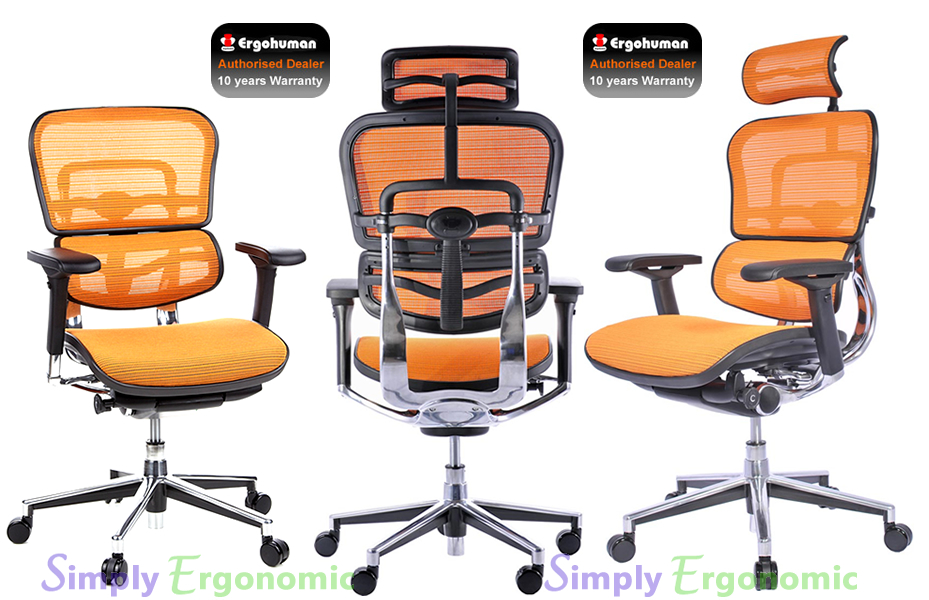 Ergohuman Chair - Green