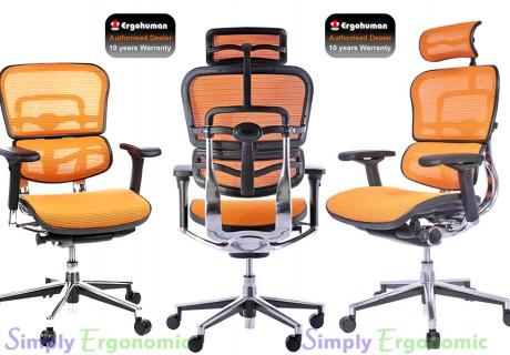 Ergohuman Chair – Green